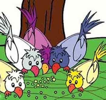 داستان زیبای اتحاد کبوتران